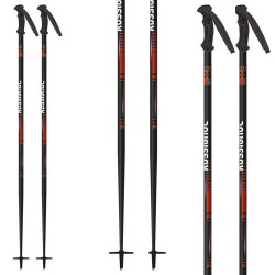 ski poles Rossignol Scan Junior