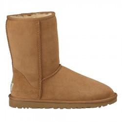 boots Ugg Classic Short beige woman