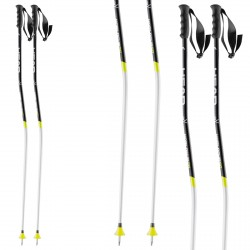 Ski poles Head Worldcup SG