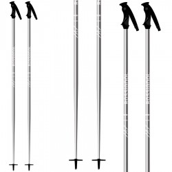 ski poles Rossignol Rental Junior
