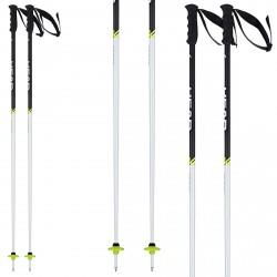 Ski poles Head Worldcup SL