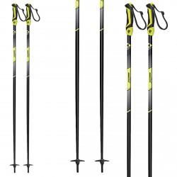 Ski poles Fischer Pro Turn XTD
