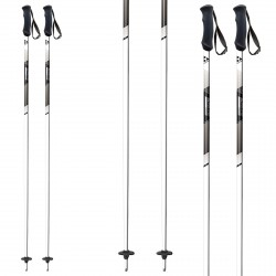 Ski poles Fischer Pro Alu white