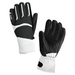 ski gloves Astrolabio Z18E woman