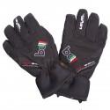 ski gloves Bottero Ski Bo