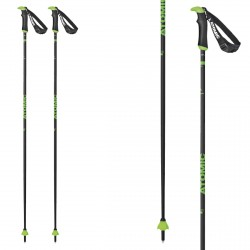 Ski poles Atomic Redster X Carbon