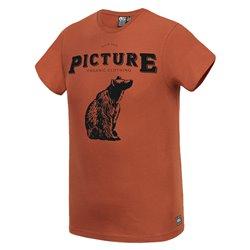 T-shirt Picture Polar Brick