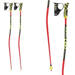 Batons de ski Leki Wc Gs Tbs