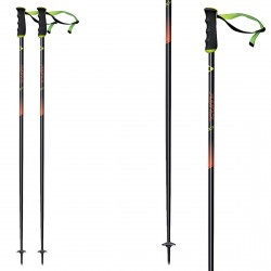 Ski poles Fischer RC4 The Curv AL