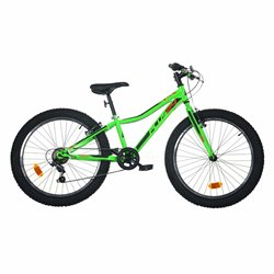 Bicicletta Dino 24