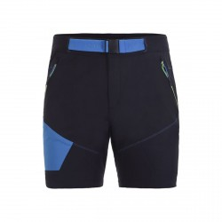 Men's shorts Icepeak Delphos