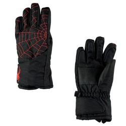 Ski gloves Spyder Overweb Junior