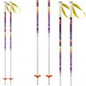 Ski poles Head Best Friend