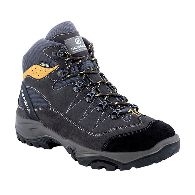 Shoes Scarpa Mistral Gtx Man