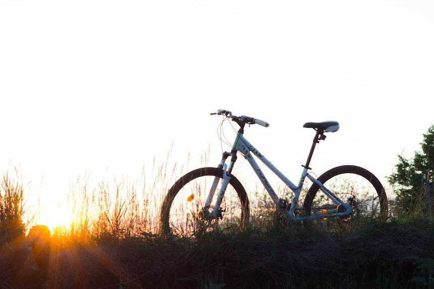 peso medio bici elettrica