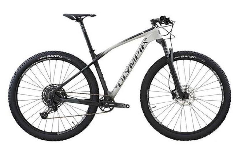 Bici con ruote grosse o mountain bike