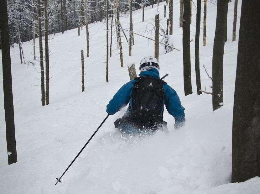 Salita e discesa: scopri la differenza tra sci freeride e scialpinismo: